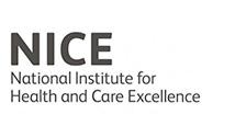 bgcs-nice-logo